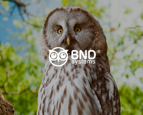 BND Systems